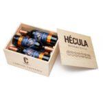 Holzkiste Hecula 6er